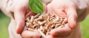Biomas-Pellets
